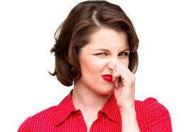immissione odori